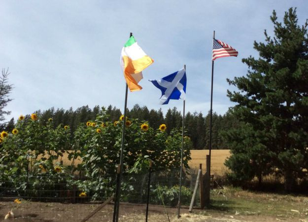 The Celtic Flags