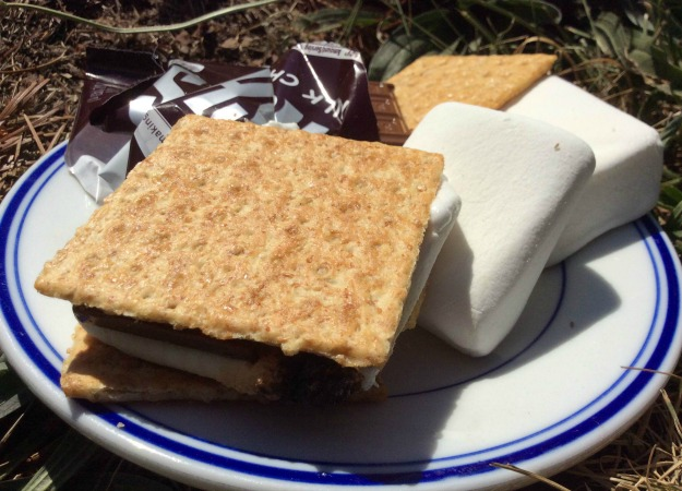 Mouth Watering S'more